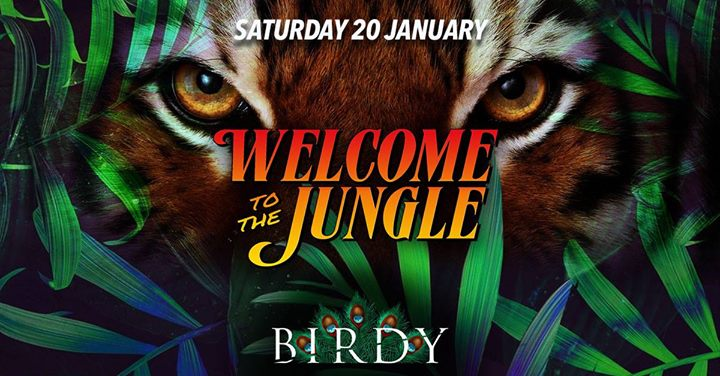Welcome to the Jungle - Saturday 20/01/2018, Birdy